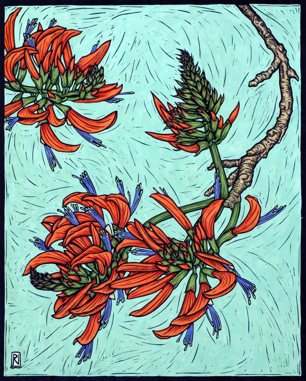 CORAL TREE  43.5 X 35.5 CM    EDITION OF 50  HAND COLOURED LINOCUT ON HANDMADE JAPANESE PAPER  $1,050