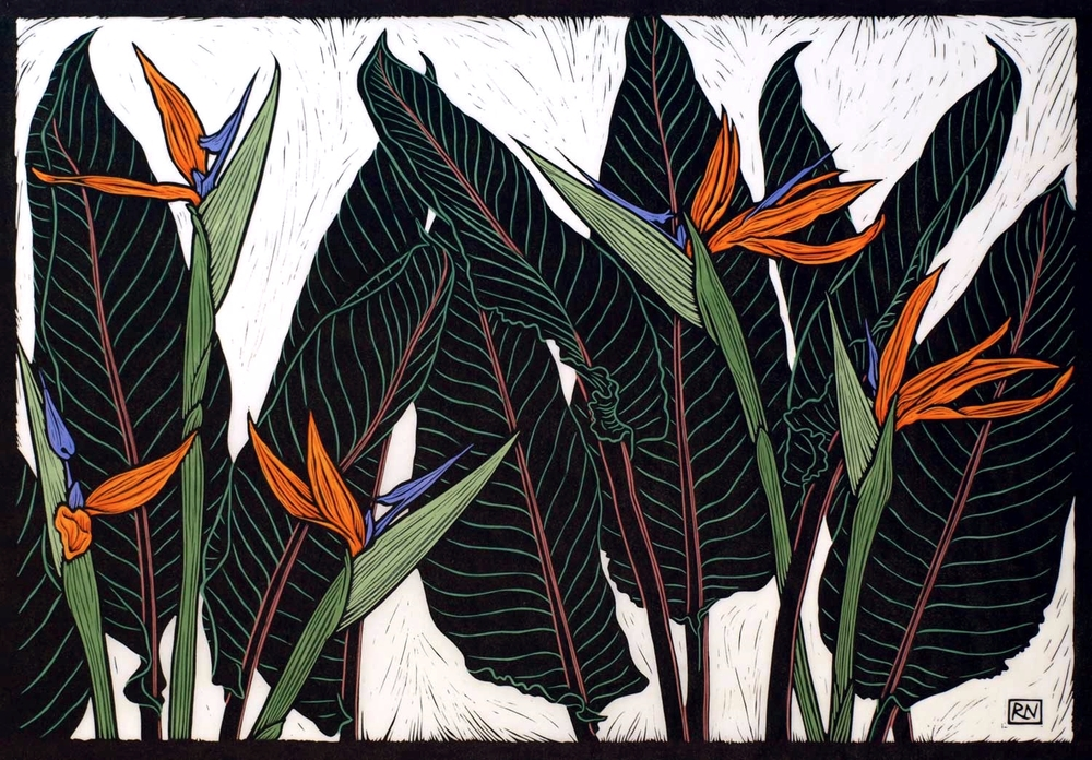 STRELITZIAS  52 X 74.5 CM    EDITION OF 50  HAND COLOURED LINOCUT ON HANDMADE JAPANESE PAPER  $1,550