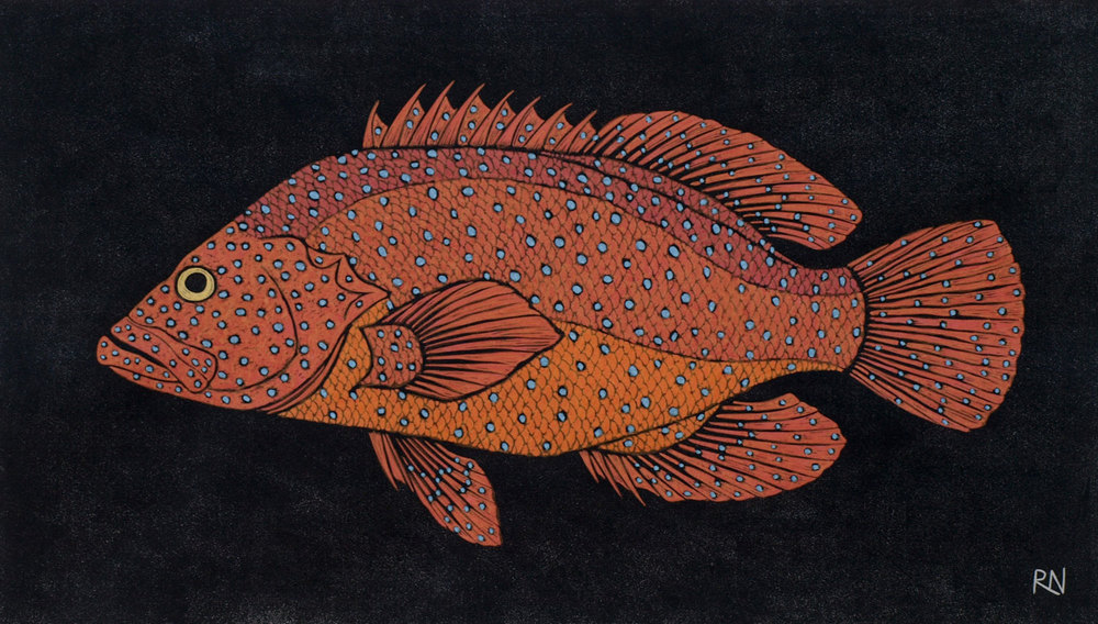 SHOAL II  30 X 52.5 CM EDITION OF 50  HAND COLOURED LINOCUT ON HANDMADE JAPANESE PAPER  $850