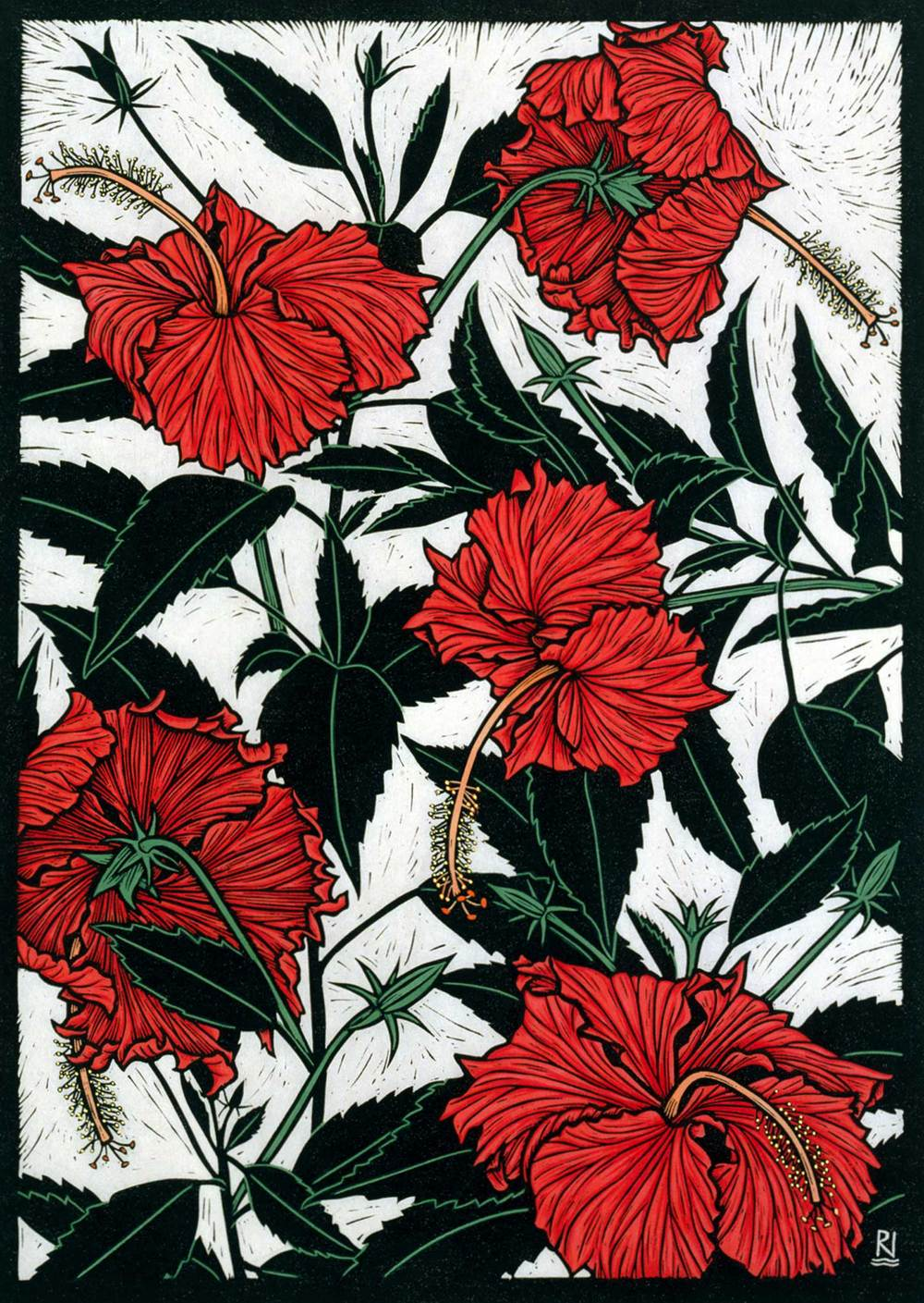 RED HIBISCUS  49 X 35 CM    EDITION OF 50  HAND COLOURED LINOCUT ON HANDMADE JAPANESE PAPER  $1,050