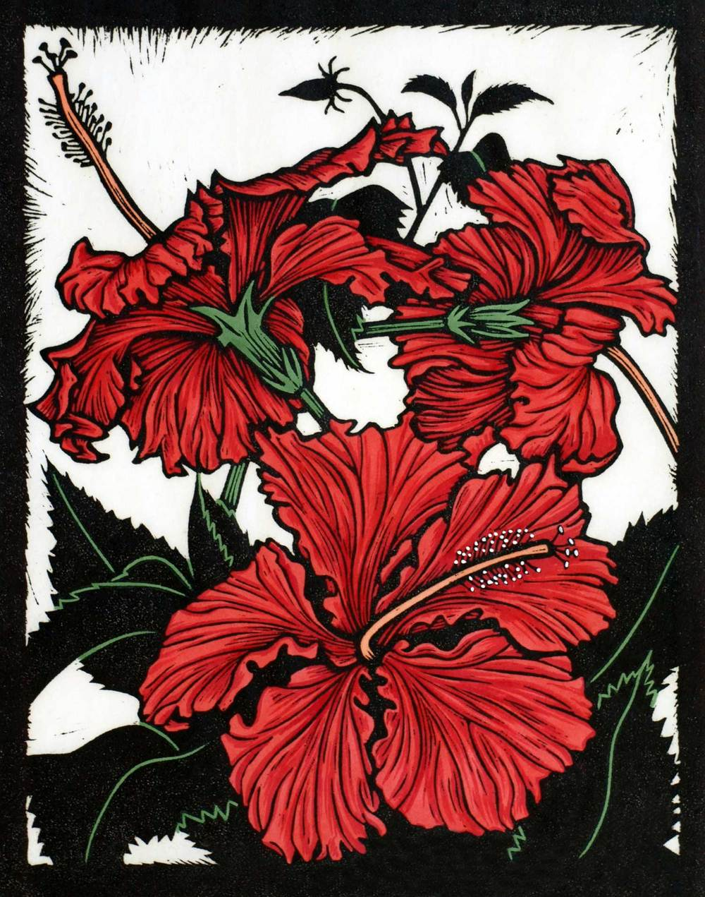 YANN'S RED HIBISCUS                               28 X 22 CM    EDITION OF 50               HAND COLOURED LINOCUT ON HANDMADE JAPANESE PAPer            $650