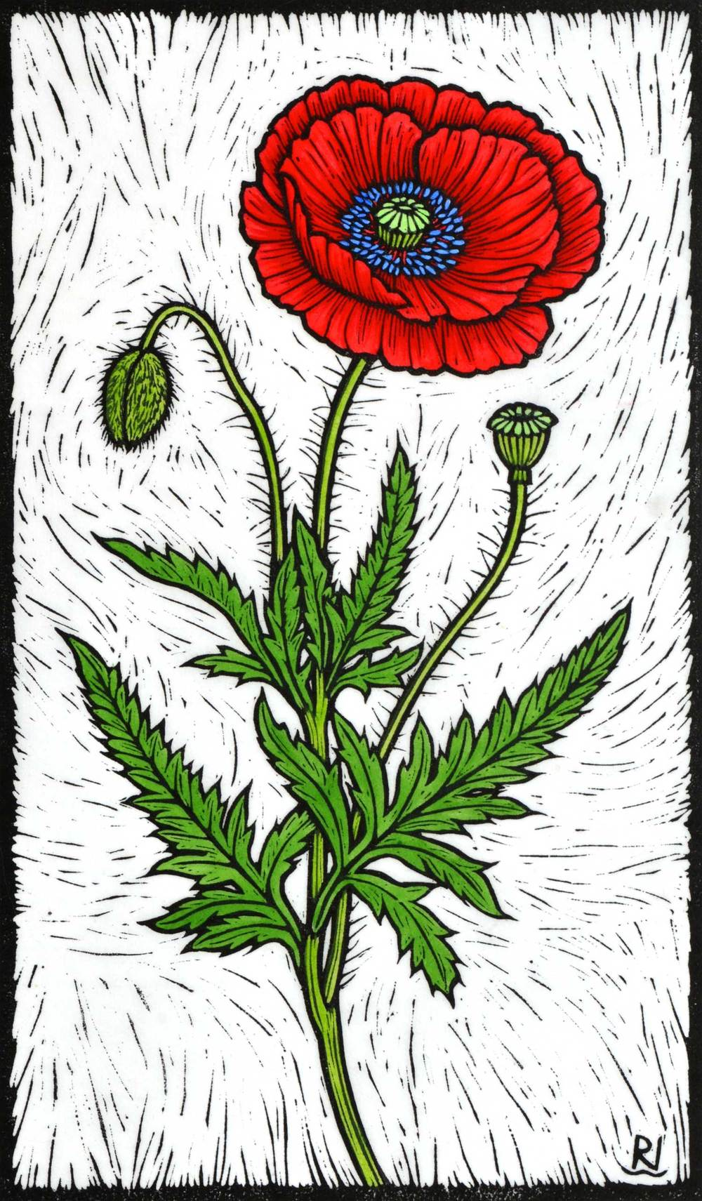 Flanders Poppy                                         33 x 19 cm    Edition of 50                    Hand Coloured Linocut on Handmade Japanese paper                $450