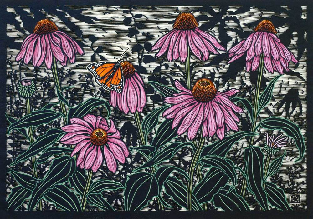 Echinacea flower                                                                                                                       35 x 50 cm    Edition of 50                                                                                                     Hand coloured linocut on handmade Japanese paper                                              $1,050