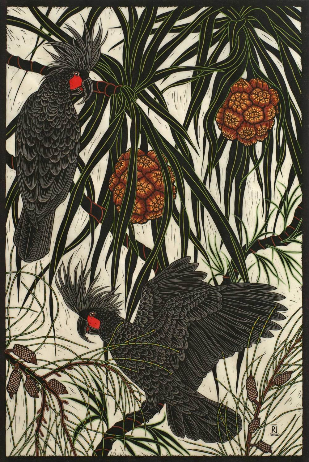 palm-cockatoo-linocut-rachel-newling.jpg