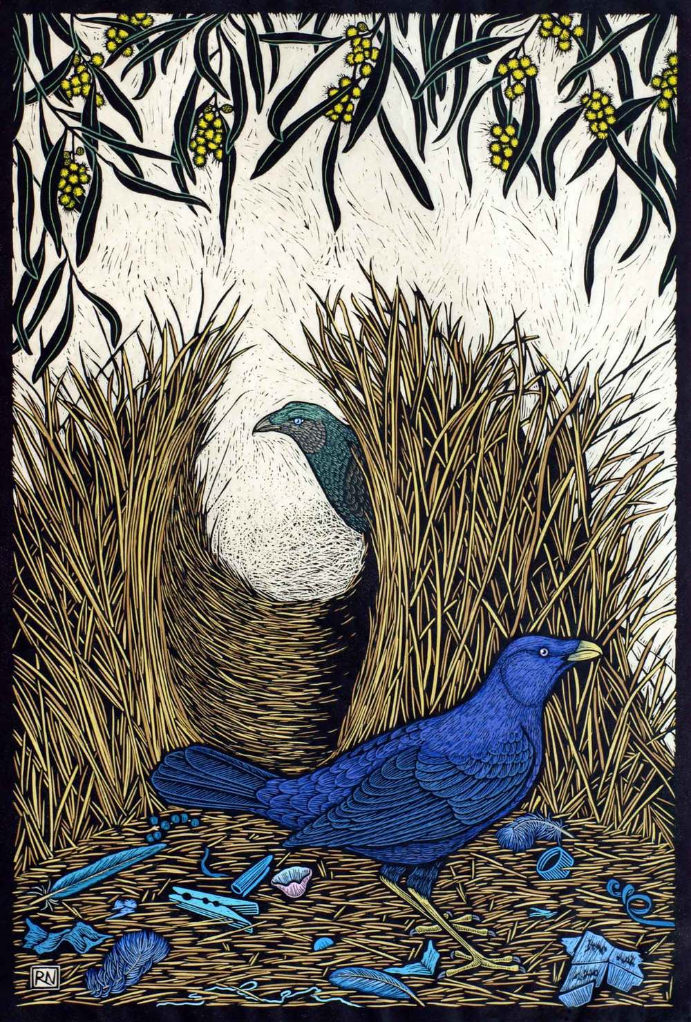 satin-bower-bird-linocut-rachel-newling.jpg