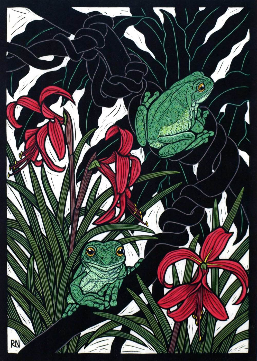green-tree-frog-linocut-rachel-newling.jpg