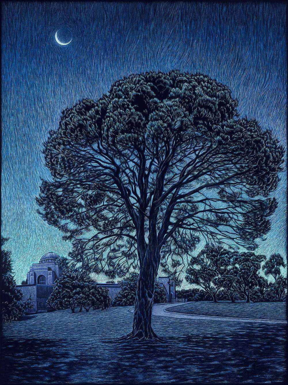 THE LONE PINE, AUSTRALIAN WAR MEMORIAL  61 X 45.5 CM    EDITION OF 50  PIGMENT ON COTTON RAG PAPER  $1,100