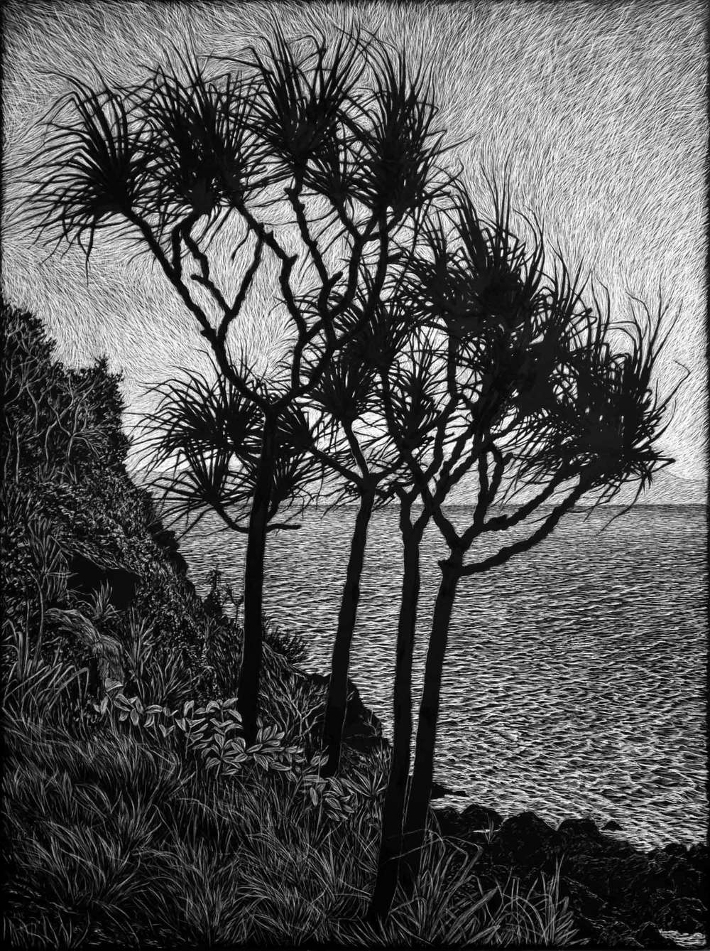 HEADLAND WITH PANDANUS  61 X 45.5 CM    EDITION OF 50  PIGMENT ON COTTON RAG PAPER  $1,100  also available 75 x 56 cm $1,350