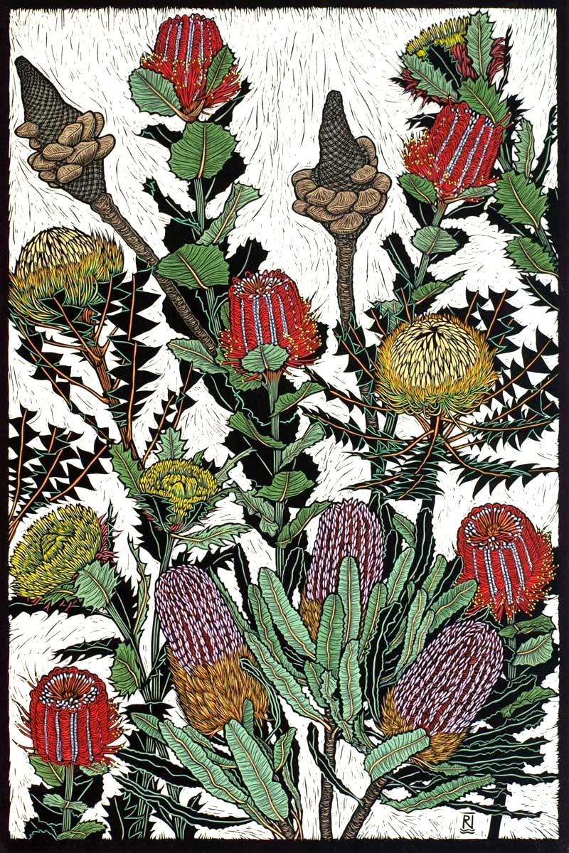 BANKSIAS & DRYANDRA  75 X 50 CM    EDITION OF 50  HAND COLOURED LINOCUT ON HANDMADE JAPANESE PAPER  $1,700