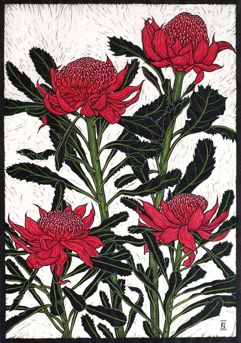 WARATAH  75.5 X 54.5 CM    EDITION OF 50  HAND COLOURED LINOCUT ON HANDMADE JAPANESE PAPER  $1,700
