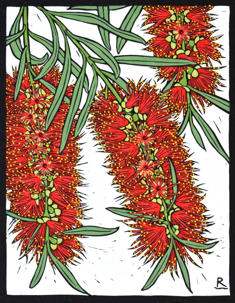 BOTTLE BRUSH 28 X 22 CM    EDITION OF 50 HAND COLOURED LINOCUT ON HANDMADE JAPANESE PAPER $550