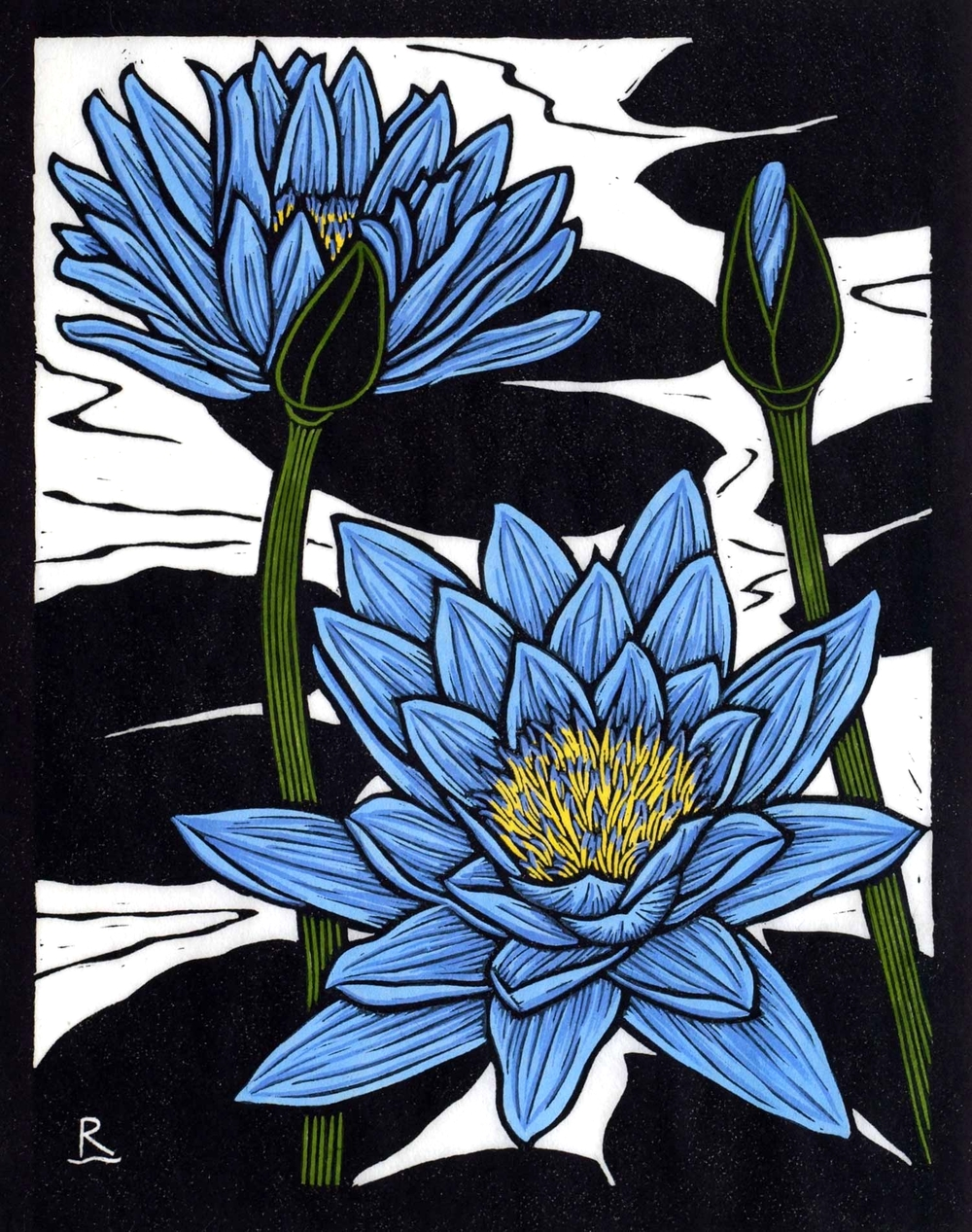 BLUE WATERLILY 28 X 22 CM    EDITION OF 50 HAND COLOURED LINOCUT ON HANDMADE JAPANESE PAPER $550