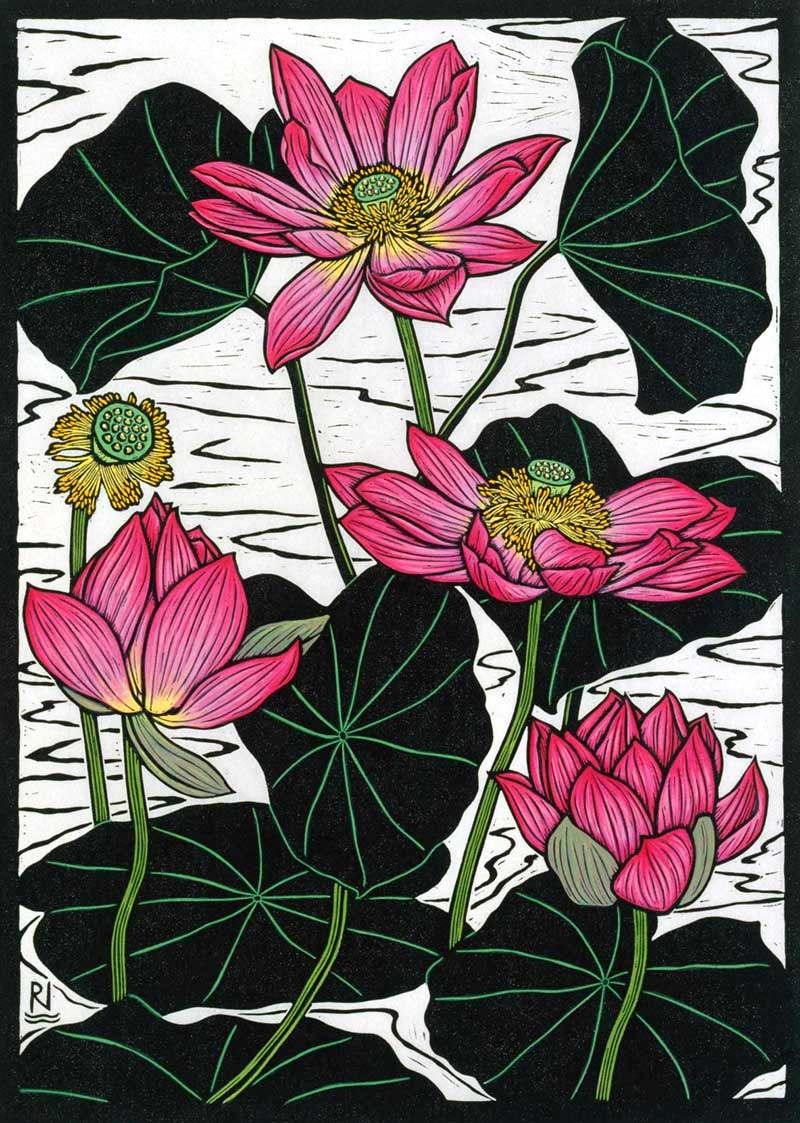 SACRED LOTUS II 49 X 35 CM    EDITION OF 50 HAND COLOURED LINOCUT ON HANDMADE JAPANESE PAPER $950