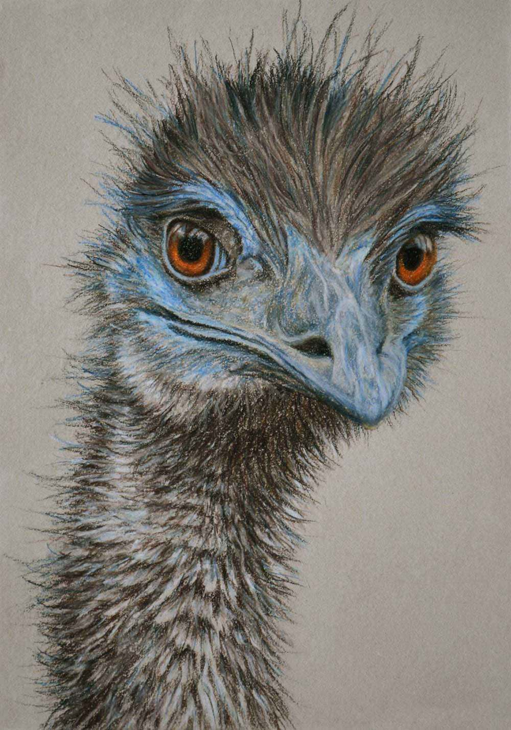 Emu II  30 x 21 cm Pastel on handmade paper SOLD