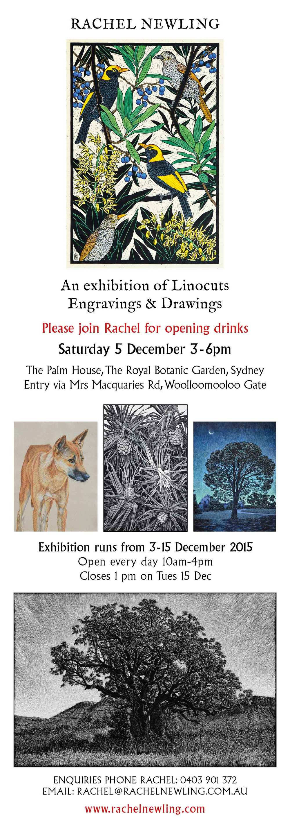 exhibition-invitation-rachel-newling.jpg