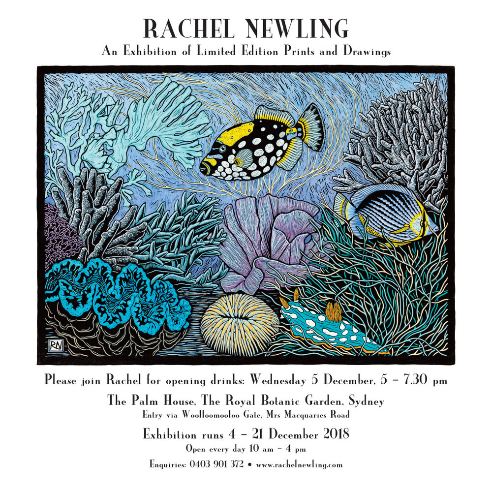 rachel-newling-exhibition.pdf