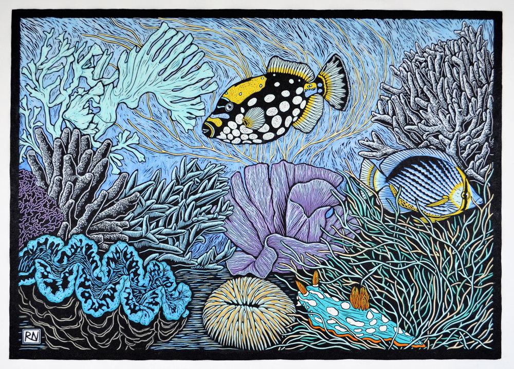 Coral Reef Rachel Newling.jpg