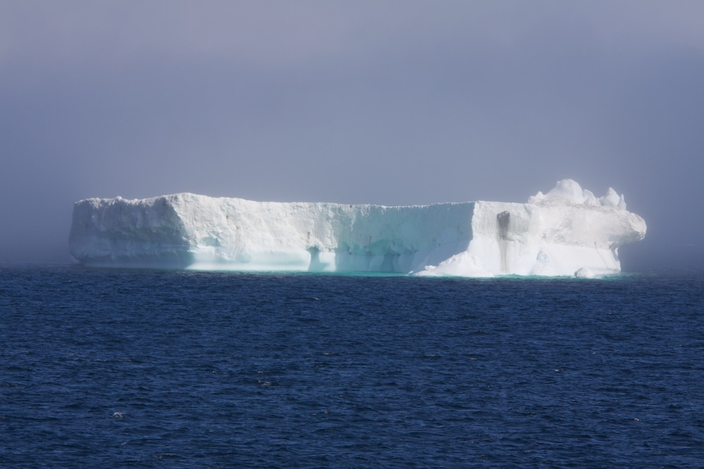 Bergs off the west coast of Greenland