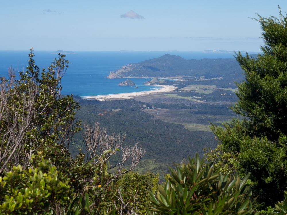 Claris, Great Barrier Island