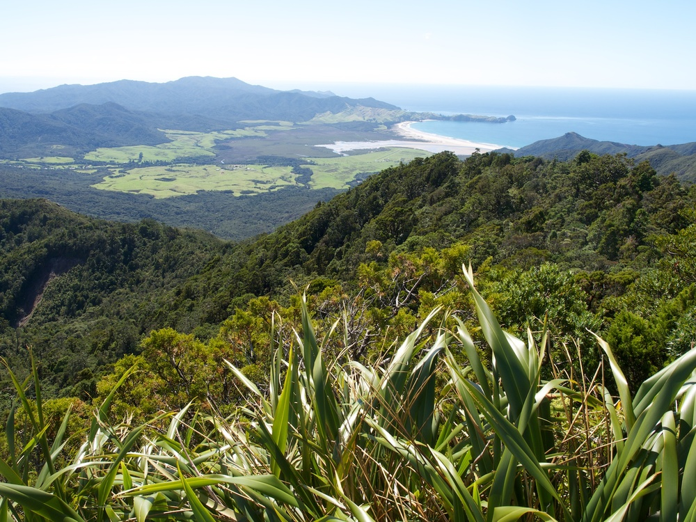 North end of Great Barrier Island