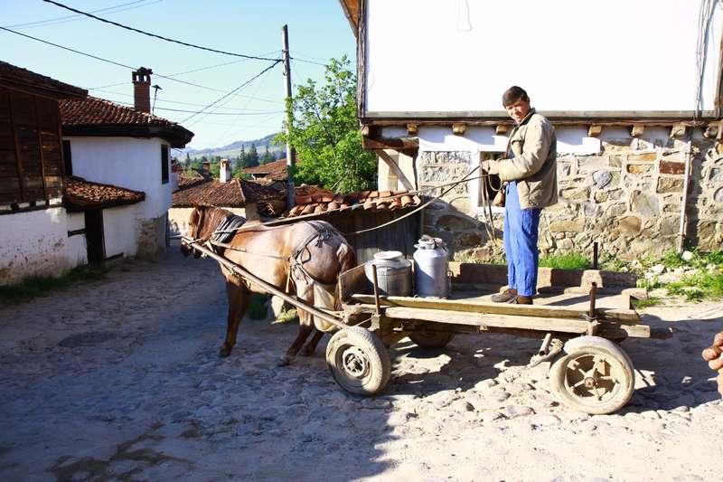 Mılk delivary in Koprivshtitsa