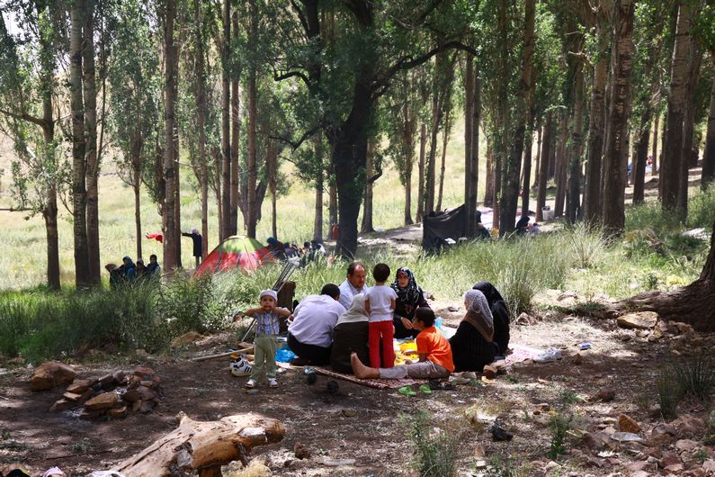 The Iranian picnic in the mountains.