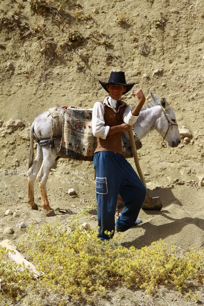 Local cowboy tending his donkey.