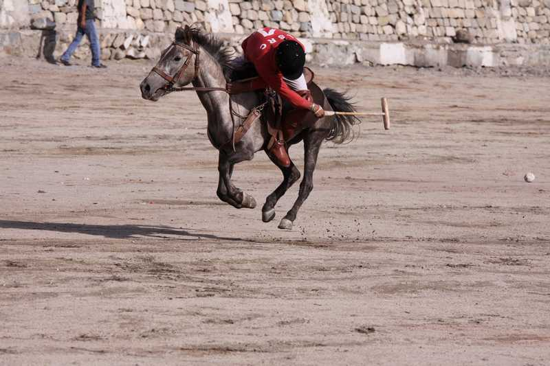 Polo at the Ladakh Festival in Leh