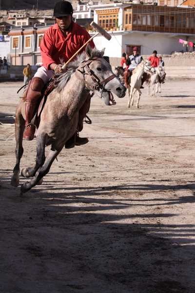 Polo match at the Ladakh Festival in Leh