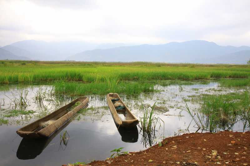 The wetlands near Lugu Lake.