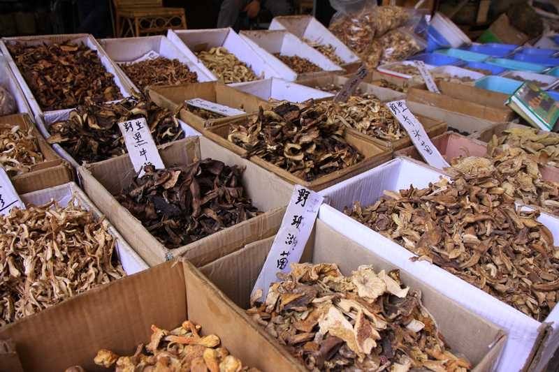 There are over 900 types of edible mushrooms in China.