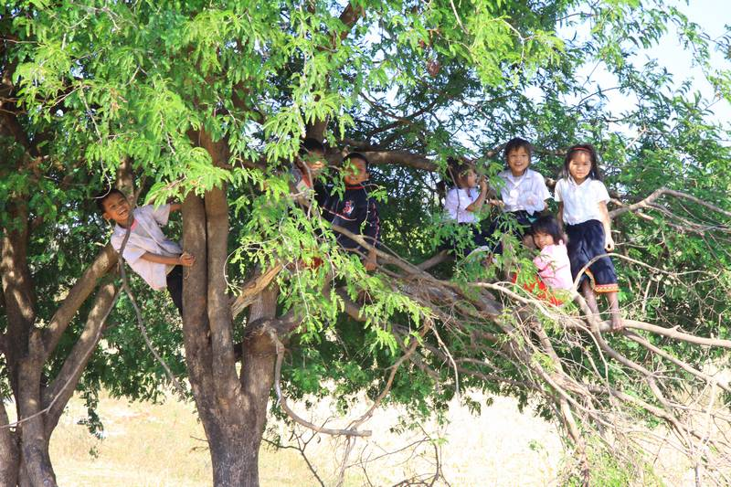 "Kids just hanging out in a tree and waiting to say ""Sabaidee"" to passing foreigners."
