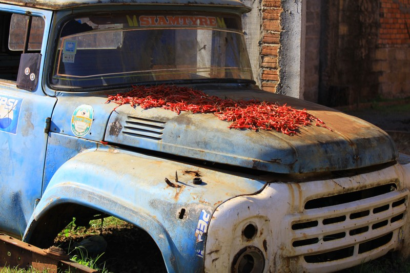 More chillis drying on an old truck.