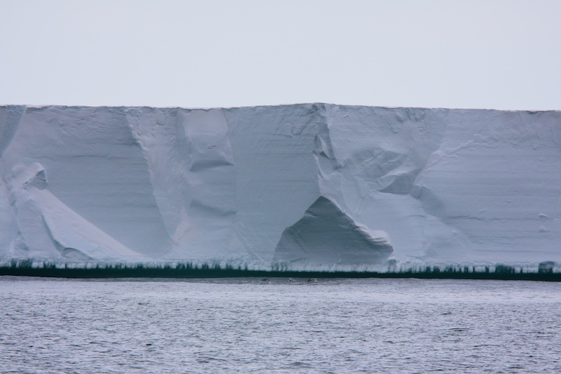 The Ice Barrier or Ross Ice Shelf, 30 to 40 m high and stretching 750 km to the east.