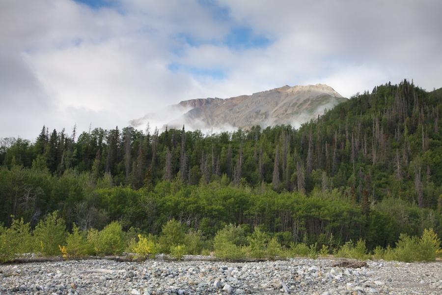 Sediment Creek.