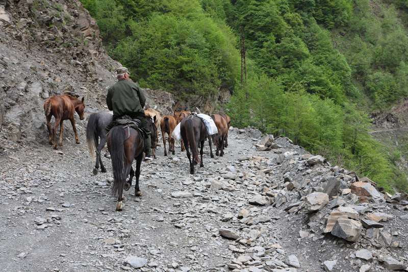 Herders moving their stock over the pass into the Tusheti Valley