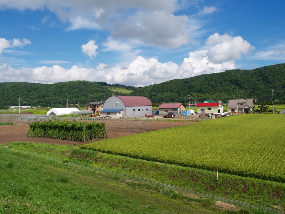 Hokkaido farm country.
