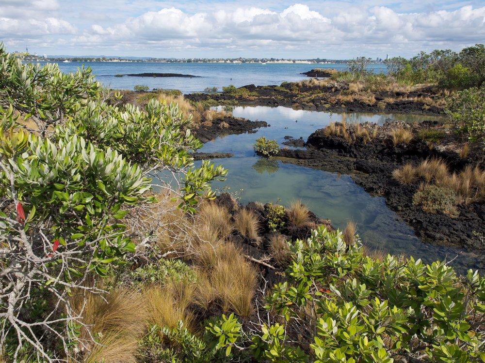 Rangitoto Island, Hauraki Gulf