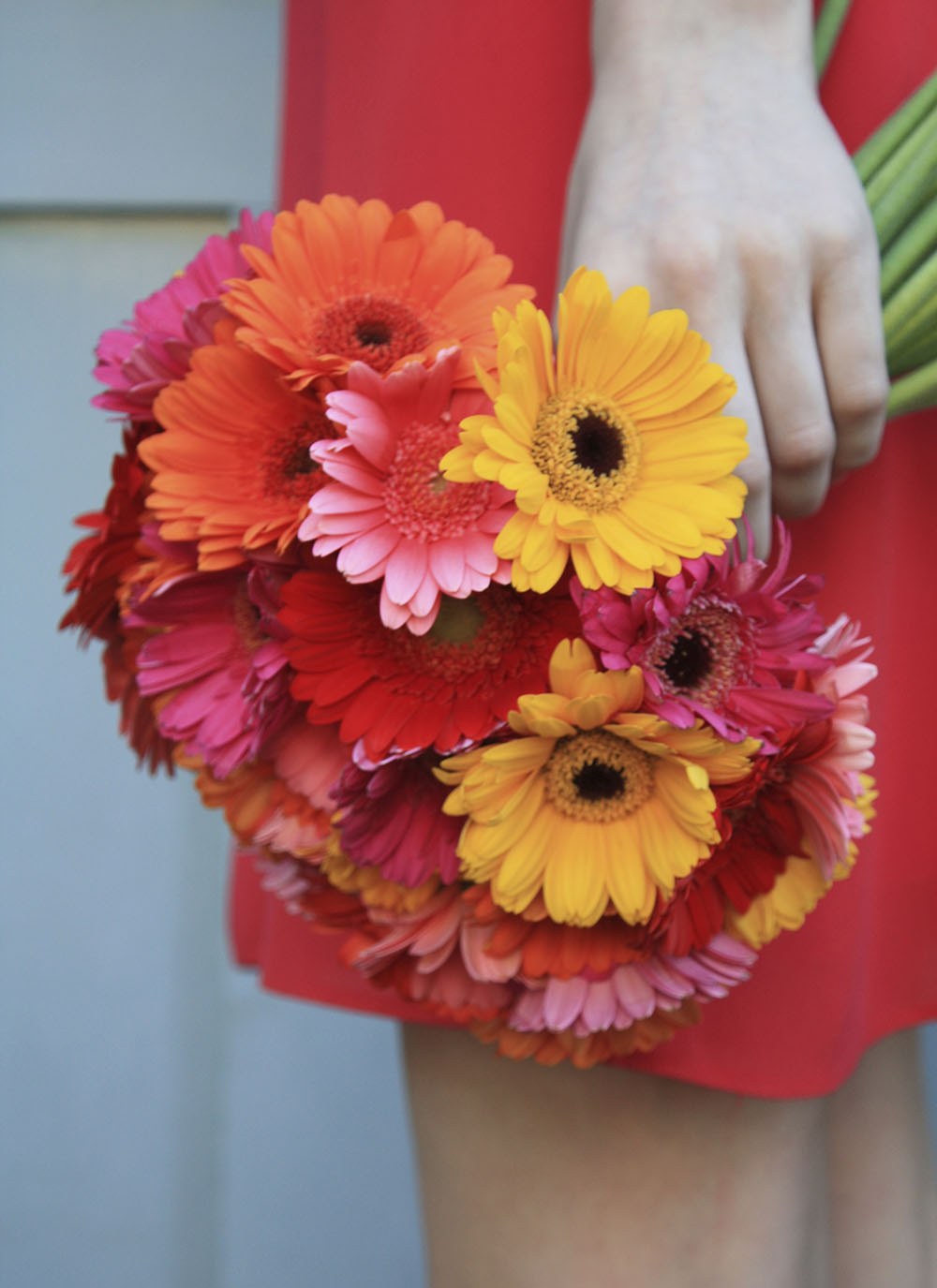 gerberas-for-a-wedding-gravesend.jpeg