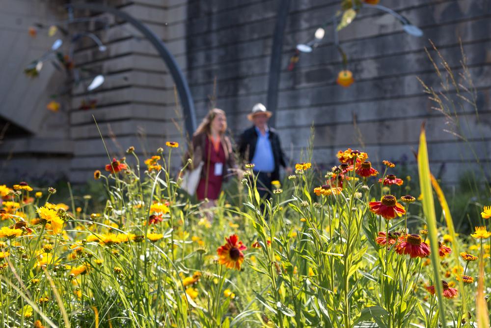 Scène de vie pendant l'évènement Petites Fleurs Folies. © Sébastien Borda