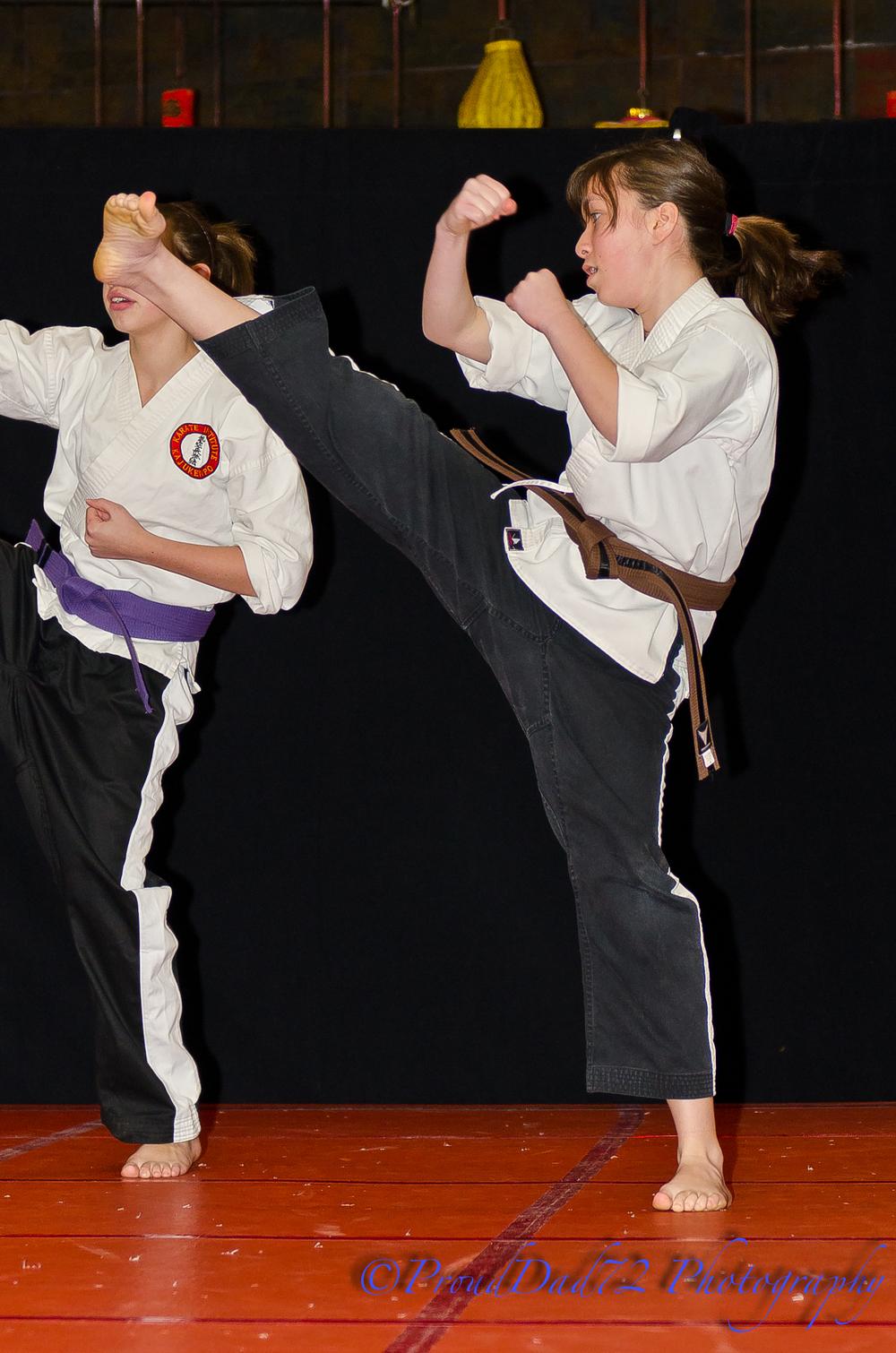 karate1-21-2012-5.jpg