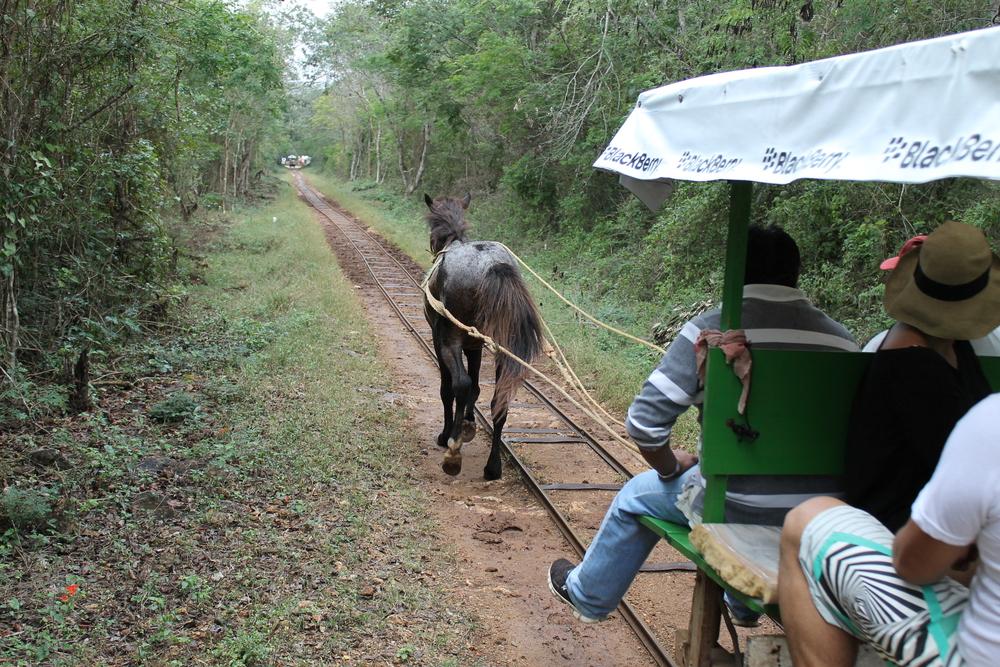 Chunkanan Cenote Ride