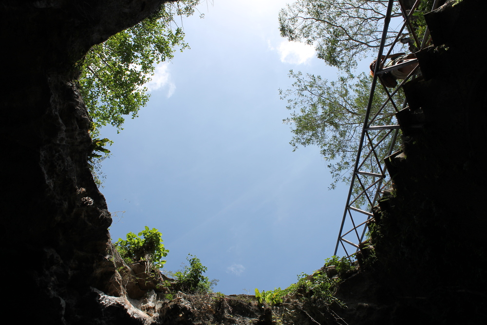 The Chunkanan cenote, looking up.