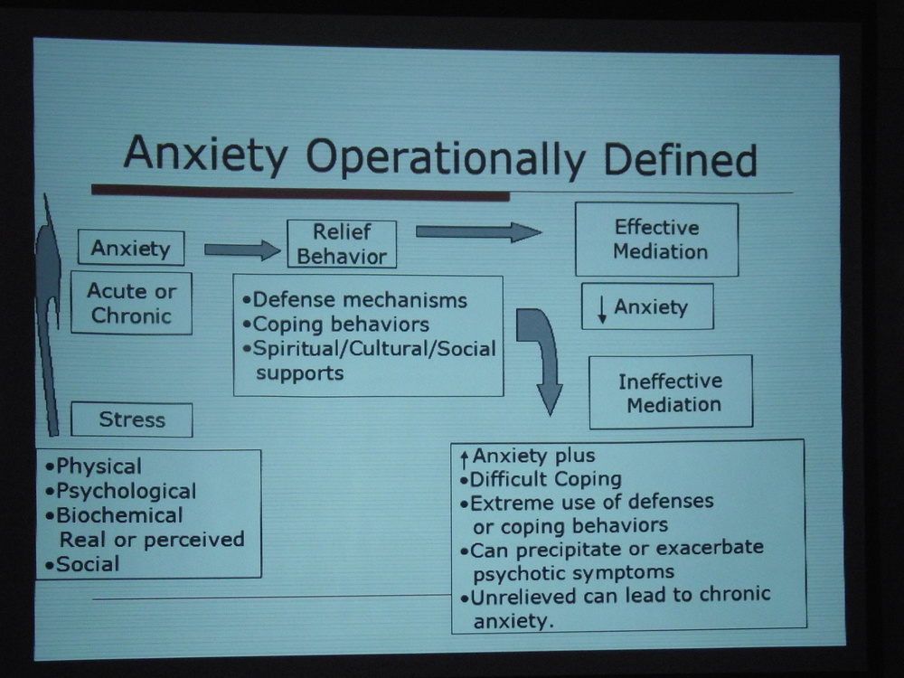 Anxiety Operationally Defined.JPG