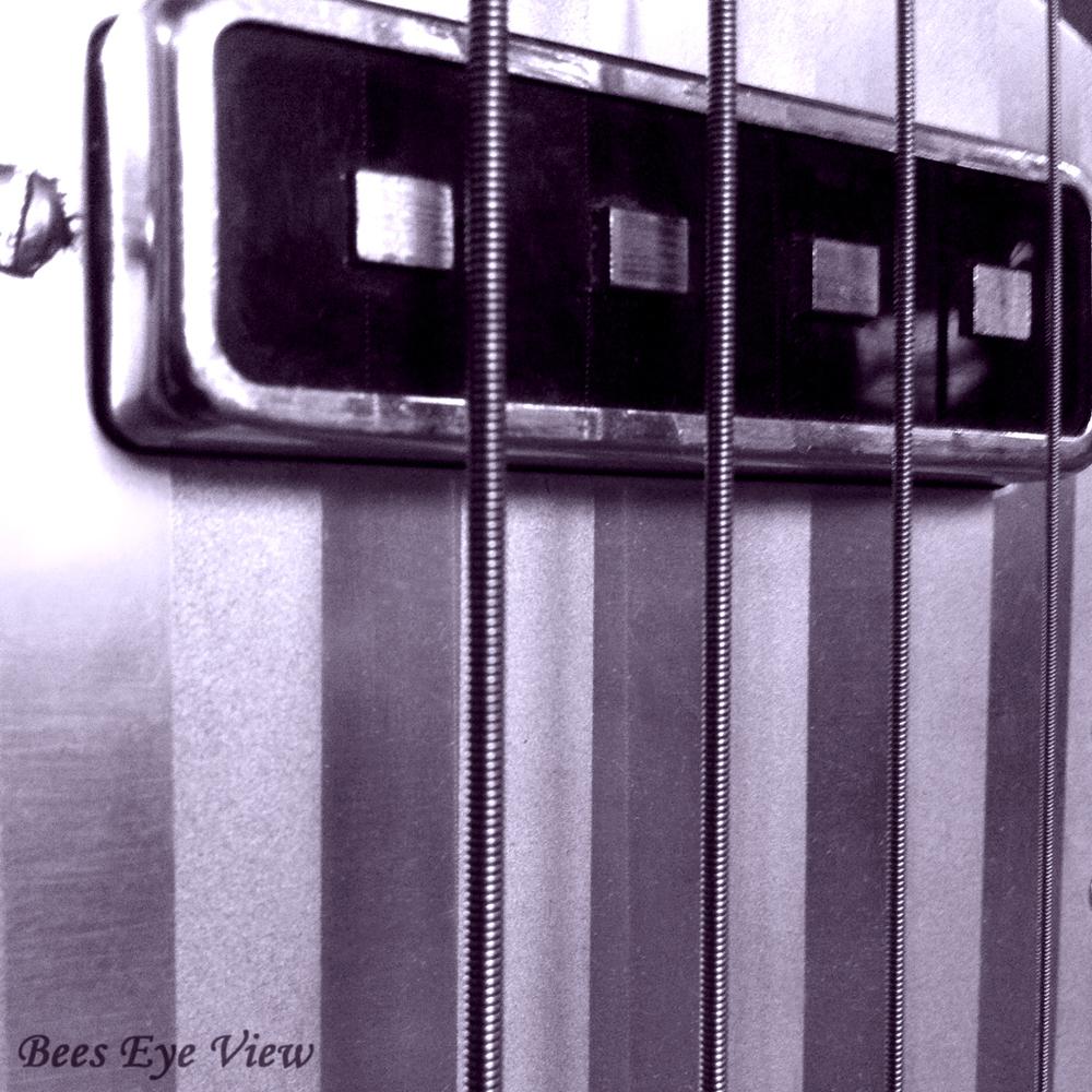 StripedBassBW.jpg