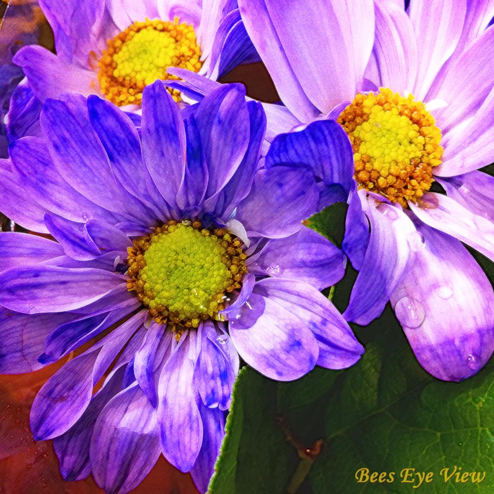 PurpleFlowersPaint.jpg