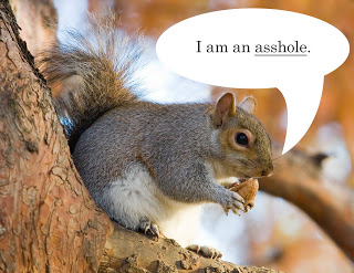 "Is it just me or does ""an asshole"" sound wrong?  ""A asshole"" sounds even more not right.  Maybe because ""asshole"" is usually used in the plural, as it is hard to limit yourself to just one asshole?  This particular squirrel, however, deserves singling out due to the ridiculous way he is holding the nut.  What are we, at a tea party?  Use your pinky finger asshole."