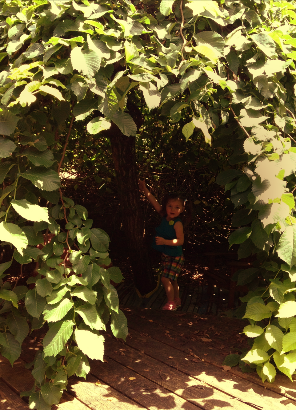 My adorable niece, exploring the hidden wilds underneath the canopy.