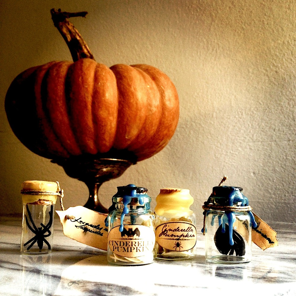 pumpkin_seed_party_favors.jpg