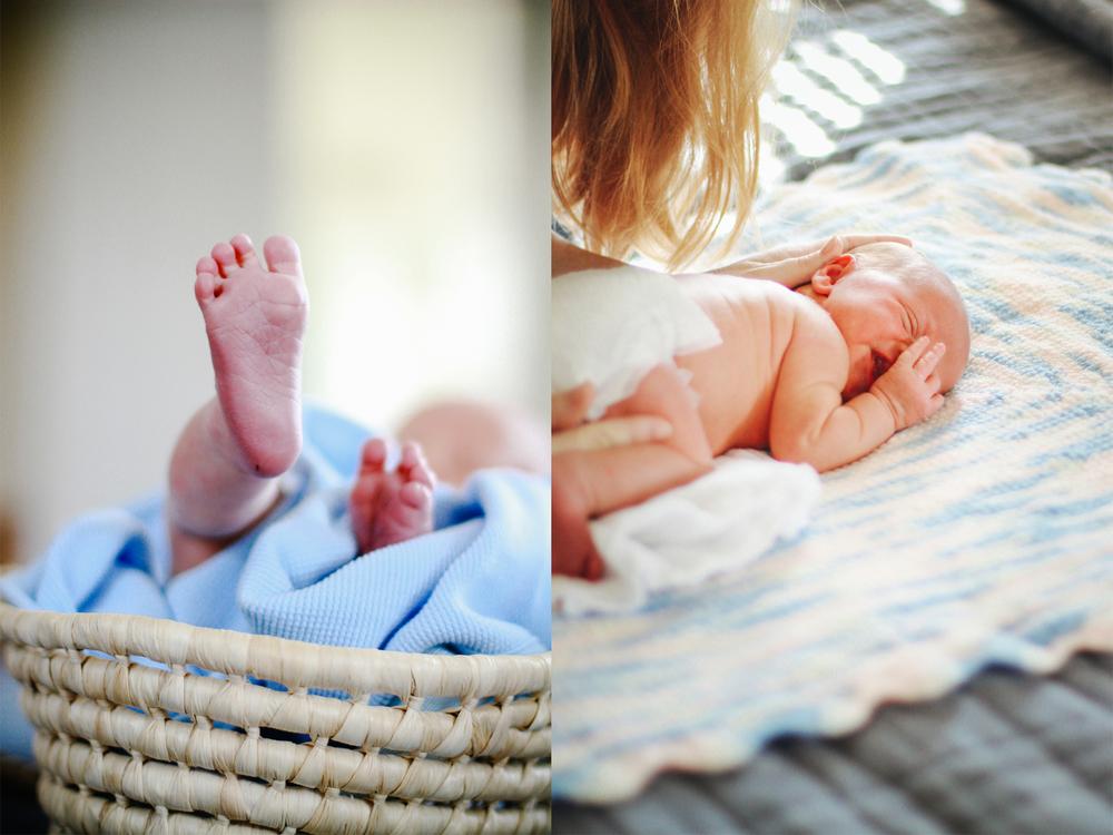 newborn portraits.jpg